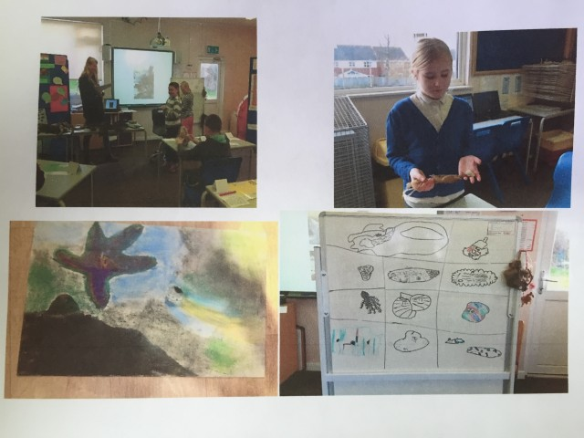Clockwise from top left: a pupil at Littleham holding an artefact, Tamara leading a discussion, a pupil's illustration, brainstorming on the whiteboard.